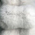 Песец белый — Ателье по коже