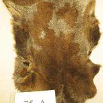 Качественный дубленочный мех из Испании