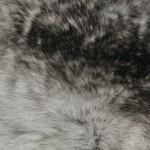 Шиншилла — Ателье по коже