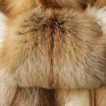 Лиса местная — Ателье по коже