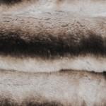 Кролик рекс коричневый — Ателье по коже