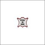 Изображение логотипа для фотогалереи - фото 1